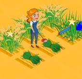 Buğday Çiftliği